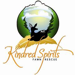 Kindred Spirits Fawn Rescue Logo