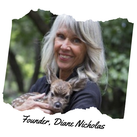 Founder Diane Nicholas